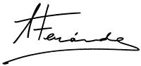 Araceli Fernandez – Pintora Logo